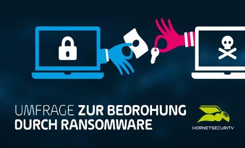 Hornetsecurity Umfrage zur Bedrohung durch Ransomware (Bild: Hornetsecurity GmbH)