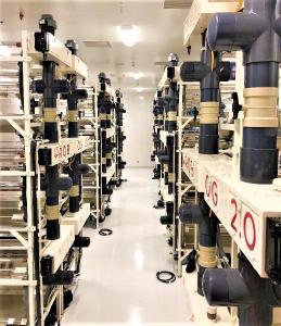 Foto 3: Einer von acht Growrooms mit jeweils 42 Orbitalgärten in RQB's. Standort Edmo