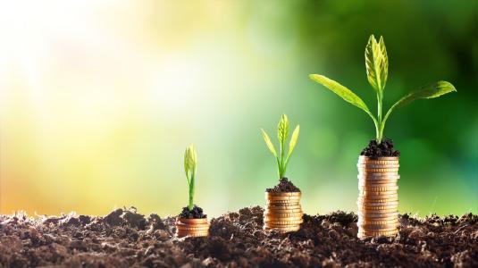 VisualVest engagiert sich für Nachhaltigkeit im Finanzsektor