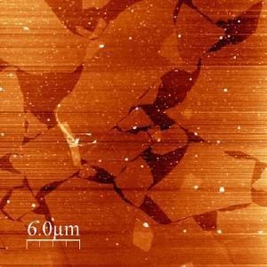 An image of a Langmuir-Blodgett film of graphene imaged using the JPK NanoWizard® ULTRA Speed AFM (left)