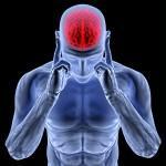 Wie reagiert unser Hirn auf textile Reize? Unsere 5 Sinne (Sehen, Hören, Fühlen, Riechen, Schmecken), versorgen uns jede Sekunde mit einer Fülle an Informationen, von denen uns nur ein Bruchteil bewusst wird, doch der Körper reagiert. Diese multisensorischen Informationen können am POS genutzt werden. ©Fotolia.com