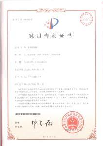 Chinese Patent.jpg