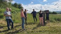 Teilnehmer besichtigen das Blühpflanzenfeld / Bild: ThEEN