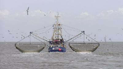 AIS and M2M Protect Against IUU Fishing by Small Vessels