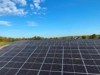 Solarpark Welgesheim in Betrieb / Foto: EnBW-HÖRMANN
