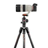 Manfrotto Befree GT Carbon α: Extrem belastbar, leicht, stylish