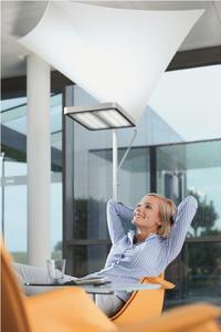 Mehr Wohlbefinden im Lebensraum Büro: Die Waldmann Lichtsegel sind nicht nur elegant, sondern verbessern insbesondere Lichtreflexion und Akustik.