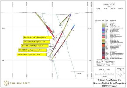 Figure 1: Section for hole NT20-176 showing significant mineralized intersections