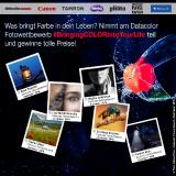 Datacolor Fotowettbewerb 2020: #BringingCOLORIntoYourLife