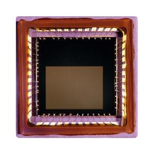 Micron MT9V125