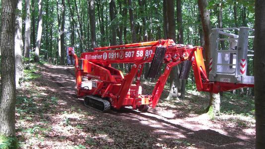 Raupenarbeitsbühne im Waldeinsatz