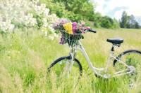 Nanotol versiegeltes Fahrrad