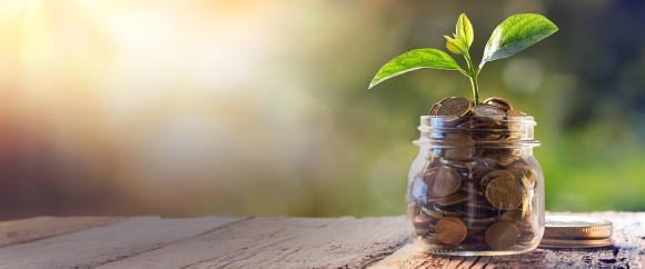 savings and growth