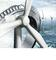 Reliability - Made by Schaeffler: higher reliability for wind turbines