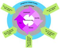 Management of Risk (M_o_R®) Framework (Maxpert®)