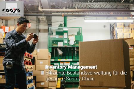 COSYS Warehouse Inventory Management Bestandsverwaltung