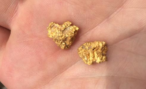 Goldnuggets, TriStar Gold