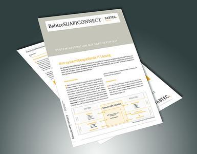SAP-Schnittstelle