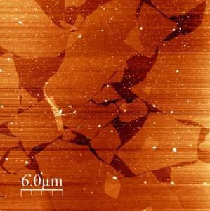 Langmuir-Blodgett Film von Graphen, aufgenommen mit dem JPK NanoWizard® ULTRA Speed AFM