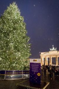 So erstrahlte der Weihnachtsbaum von lekker im vergangenen Jahr den Pariser Platz vor dem Brandenburger Tor.
