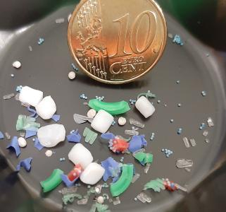 Mikroplastik ist viel kleiner als ein Zehn-Cent-Stück. Foto: EZD