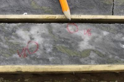 Trillium Gold Encounters Visible Gold in 3 of 5 Drill Holes. More High-Grade Results from Drilling at Newman Todd