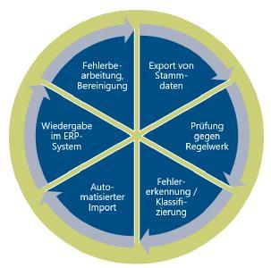 DQM als strategischer Prozess: Kreislauf zur kontinuierlichen Datenüberwachung