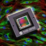 ON Semiconductor expands imaging options for extreme low-light imaging