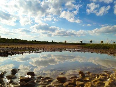 Wasserloch / Foto: Wolfgang Weichenmeier (pixelio.de)