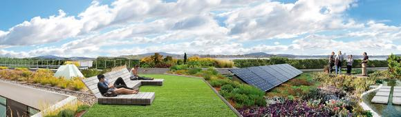 """Looking for expertise in all things """"green roof""""? ZinCo is your partner!"""