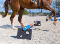 """SPÄH bietet ab sofort unter dem Markenname """"Equimore"""" Elastomer-Produkte für die Pferde- und Tierhaltung an"""