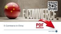 E-commerce in China PDF Download