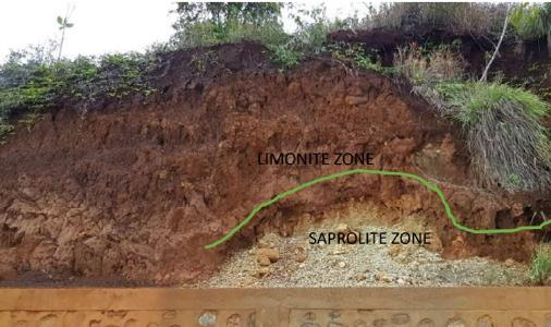 Mineralisierung auf dem TNM-Projekt; Foto: Pacific Rim Cobalt