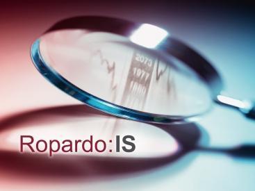 Ropardo:IS - Business Intelligence für Praktiker