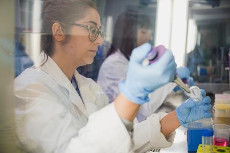 Im Labor werden die Zellen vorbereitet / Foto: HSKL/Lukas Mohr