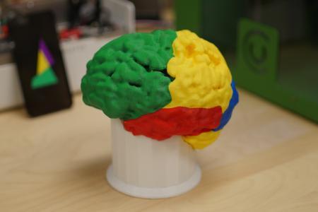 Medizinische 3D-Druck-Modelle mit Palette+