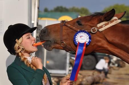 How to get a horse to eat its carrots....