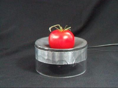 Wenn auf Knopfdruck elektrische Spannung an die dünne,weiche Kunststofffolie angelegt wird, vergrößert sie ihre Fläche, Foto: © Fraunhofer ISC
