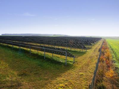 Solarkraftwerke dienen als wichtiger Rückzugsort für Pflanzen und Tiere