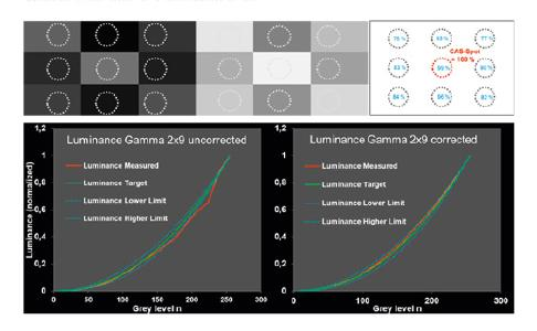 Top row: Luminance images with 9 different levels of grey for a two-shot gamma measurement. Top row right: White luminance image used for correction of spatial luminance deviations. Bottom row: Luminance values versus grey levels measured with the two-shot approach. After correction of the grey values with the white luminance picture, the electro-optical transfer function of the measured display lays well within the tolerance band (dotted blue line) as requested by the OEMs