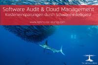 Software Audit & Cloud Management