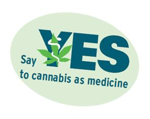 say yes