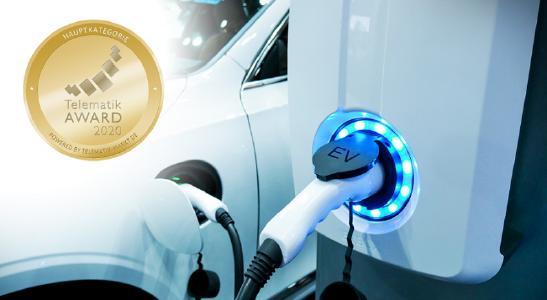 Sind Elektrofahrzeuge eine Option für Nutzfuhrparks?