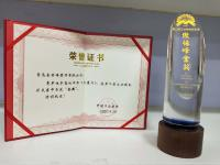 """The golden Oscar of Industry and the award certificate for the promotional video  """"Klingspor – a love story…"""""""