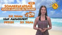 Die Q-LEARNING Sommerakademie: Juli+August 2018