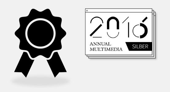 Multimedia Award 2016