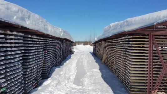 Bohrkernregal im Schnee