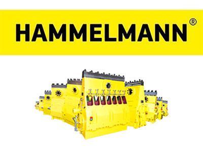 hammelmann.jpg