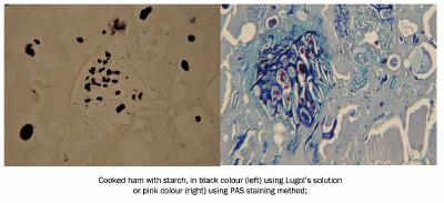 Cooked ham with starch, in black colour (left) using Lugol's solution or pink colour (right) using PAS staining method;