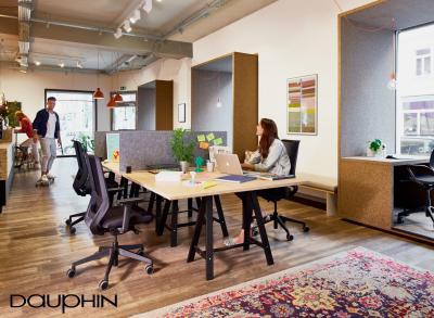 Dauphin to-sync Work Mesh Bürostuhl - Anwendung Office